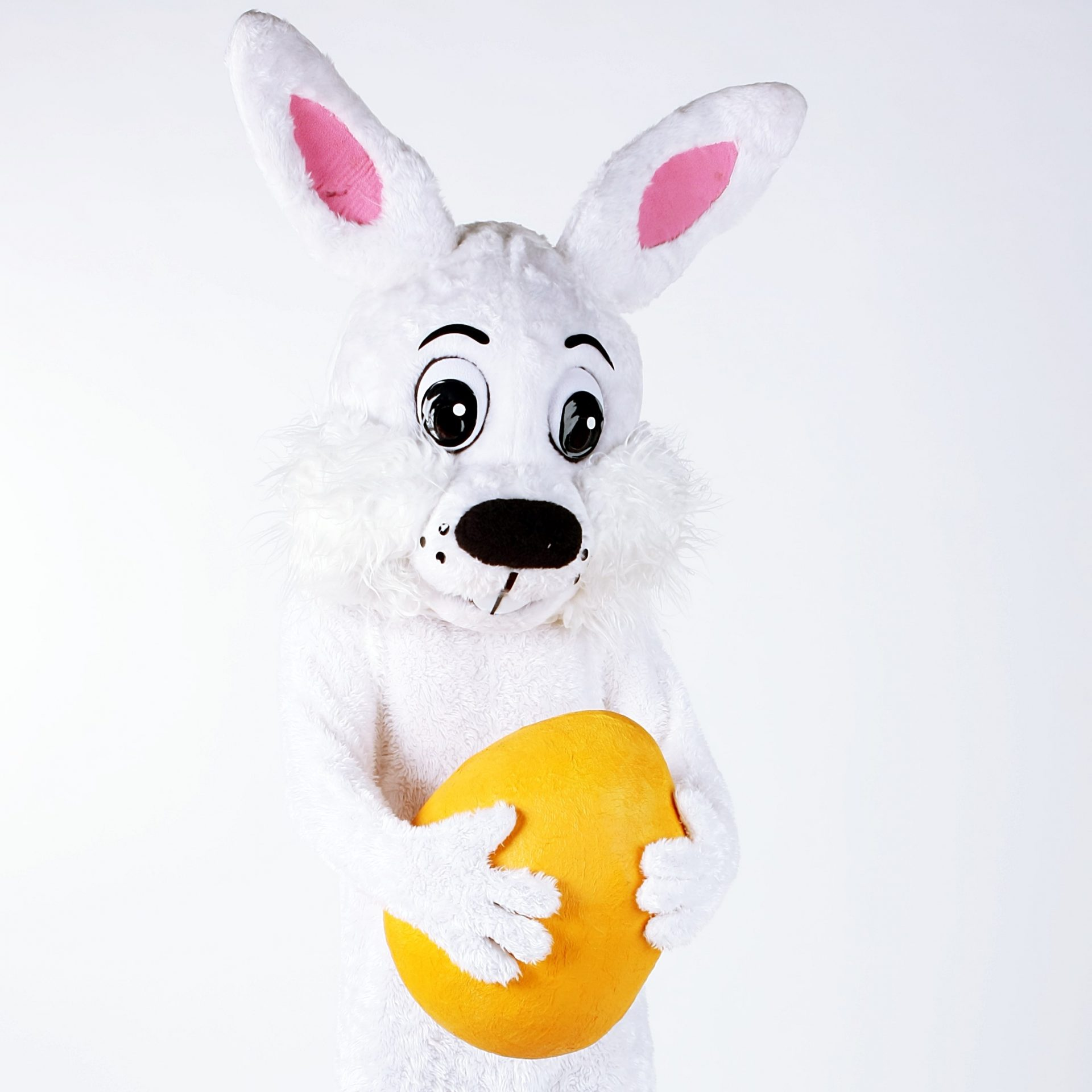 """Velikonočni zajček sporoča: <br>""""Ostani doma!"""""""